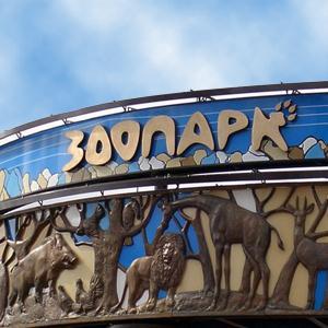 Зоопарки Морков